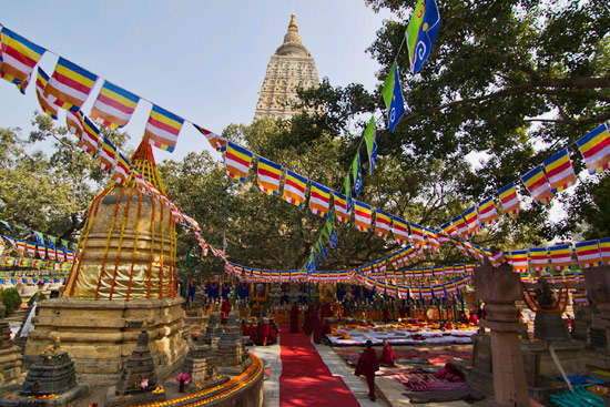 Update from Bodh Gaya