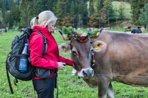 Trekking in the Allgäuer Alps