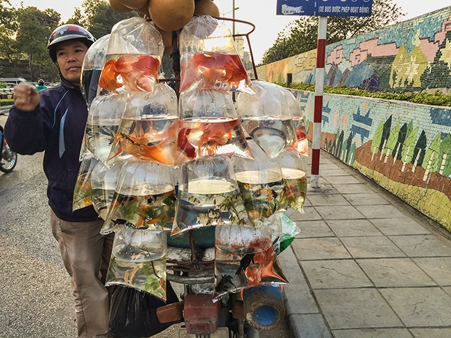 Hanoi Winter 2016 – The first 2 Days in the City