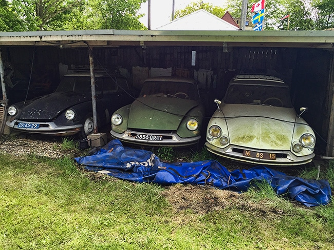 3 Citroen DS waiting to see better days