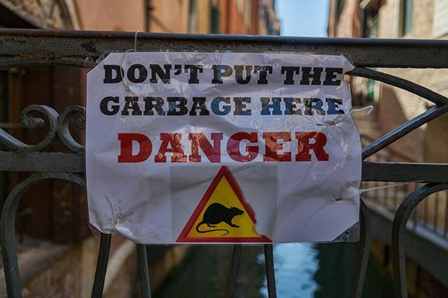 Danger! Rats!