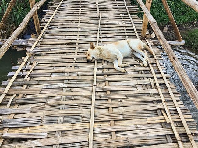 The keeper of the bridge