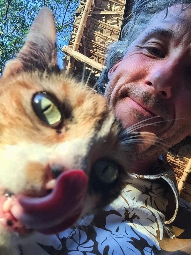 Happy cat - happy me