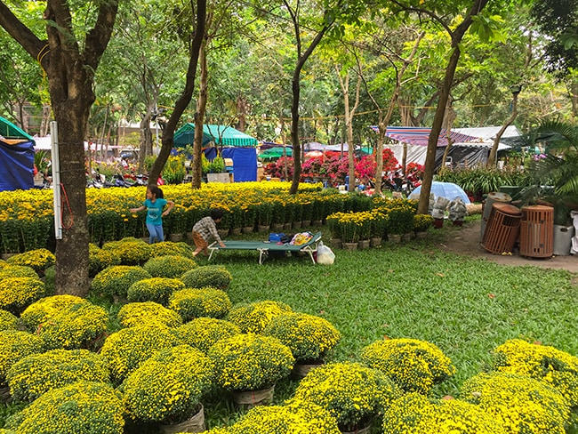 Only a few days to go before Tet. The park is a big flower market