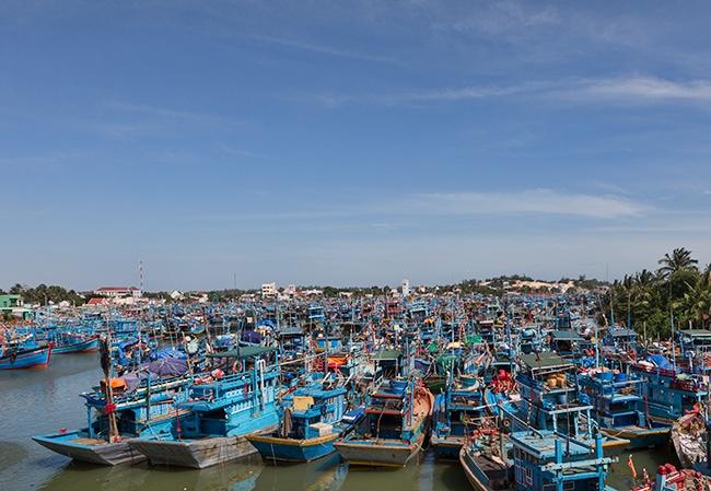Harbour in La Gi