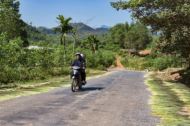 On the Ho Chi Minh Highway - The locals dry grass which will become brooms later