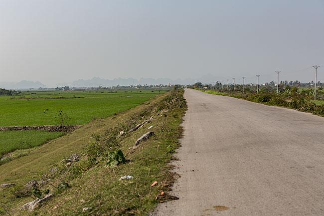 Road along the fields