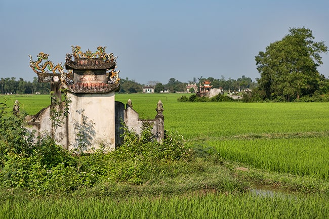 Grave in the Rice Fields