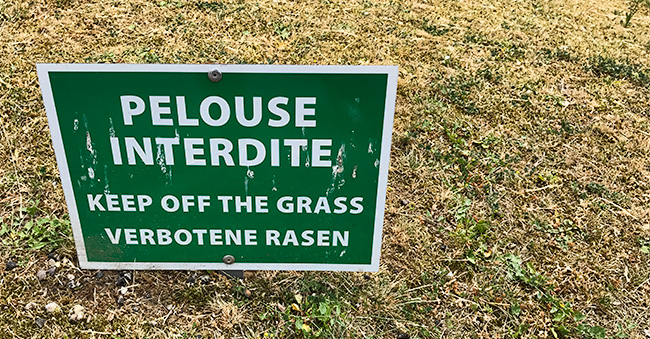 Why could they not ask for German translation?? Forbidden lawn?? And even spelled wrong