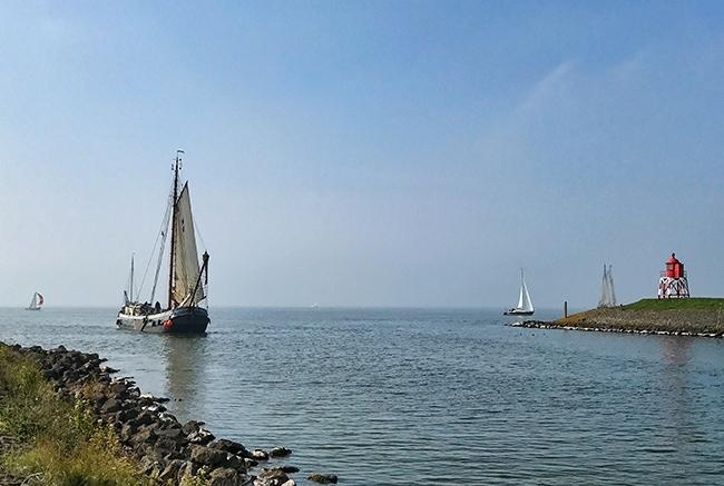 Coming back from the Ijsselmeer