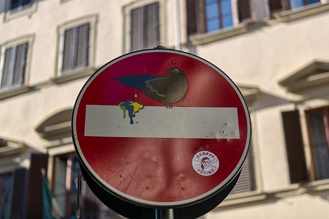 No Entry Bird Shit