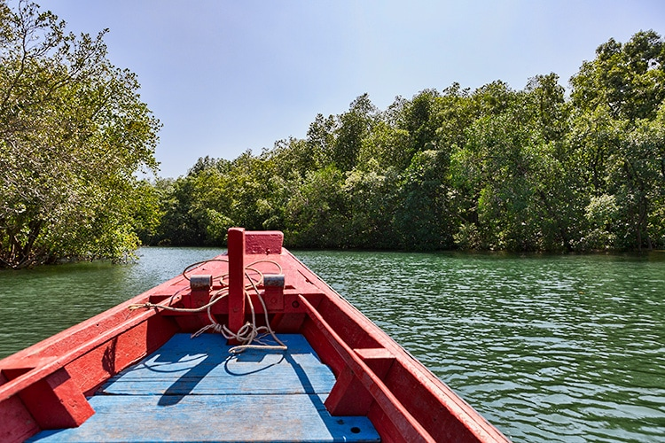 From the Golden Meadow (Tung Prong Thong) we took a boat out of the mangrove forest