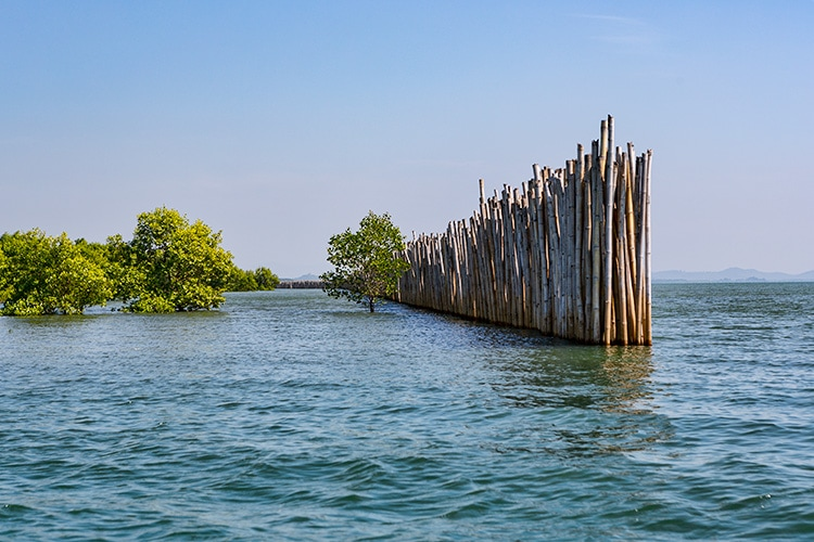 To protect the marsh from the open sea they build a wall
