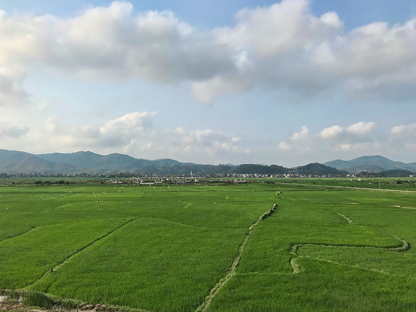 The village behind the rice fields