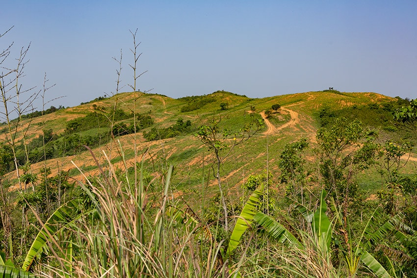 Clear cut forest along the Ho Chi Minh Trail
