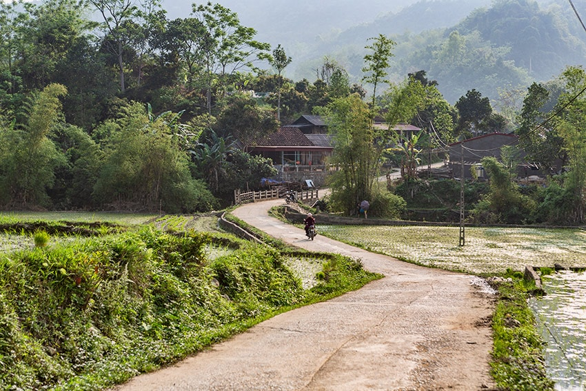 Rural road in Vietnam