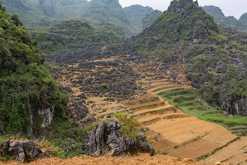 Stone fields outside of Mèo Vạc