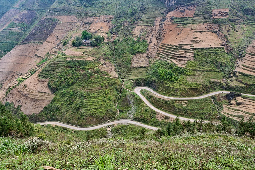 Fields in Vietnam