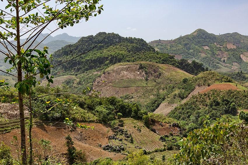 Fields in the Hills