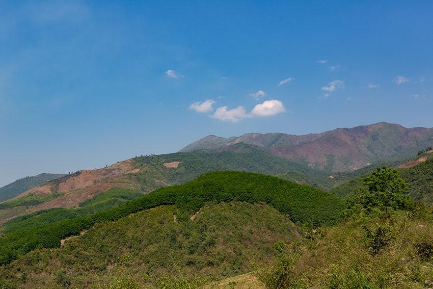 Clear cut Mountains
