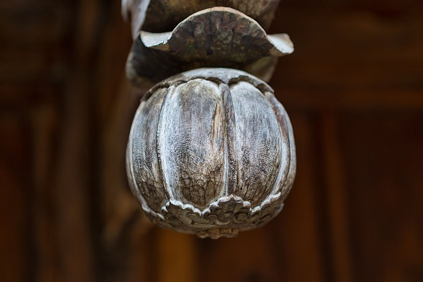 Decorative Opium fruit