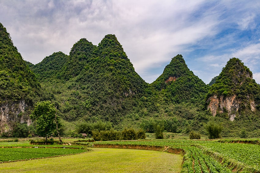 Farmland and Karst Mountains