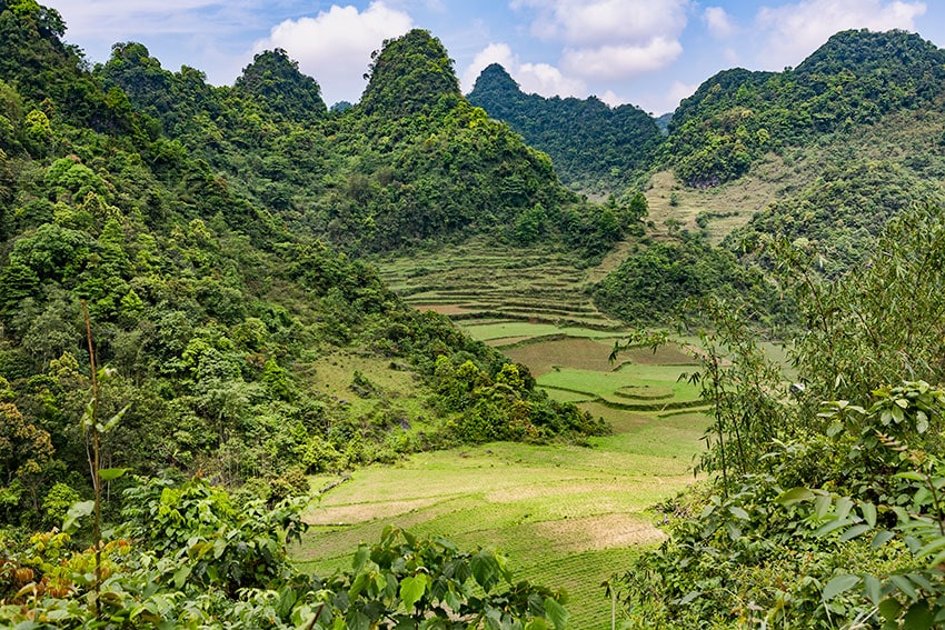 Fields and Karst Mountains