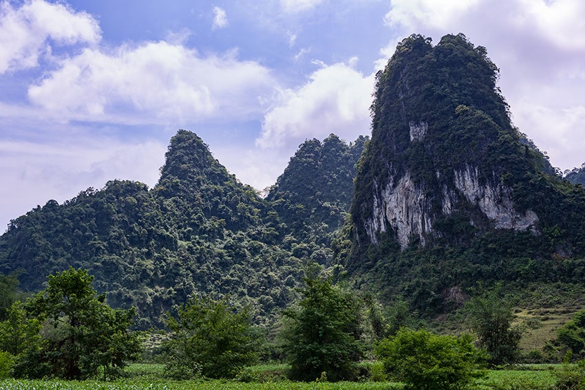 Green Karst Mountains