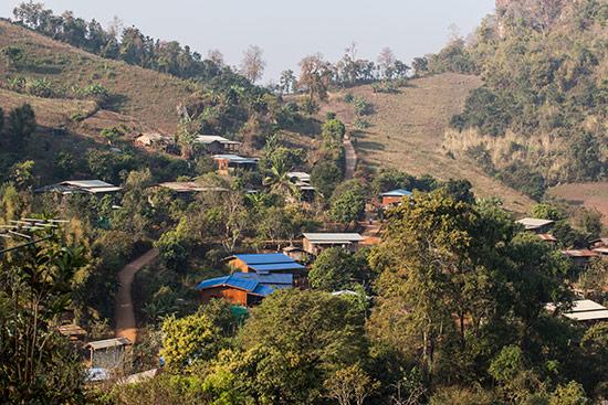 Dapilu 2013