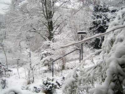 snow....